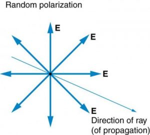 Figure 2.3.11. The slender arrow represents a ray of unpolarized light. The bold arrows represent the direction of polarization of the individual waves composing the ray. Since the light is unpolarized, the arrows point in all directions.