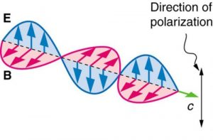 Figure 2.3.12. The polarization direction of plane polarized light is defined as the vibration direction of the electric vector E.