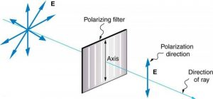 Figure 2.3.14. A polarizing filter has a polarization axis that acts as a slit passing through electric fields parallel to its direction. The direction of polarization of an EM wave is defined to be the direction of its electric field.