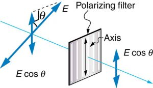 Figure 2.3.18. A polarizing filter transmits only the component of the wave parallel to its axis, Ecosθ , reducing the intensity of any light not polarized parallel to its axis.