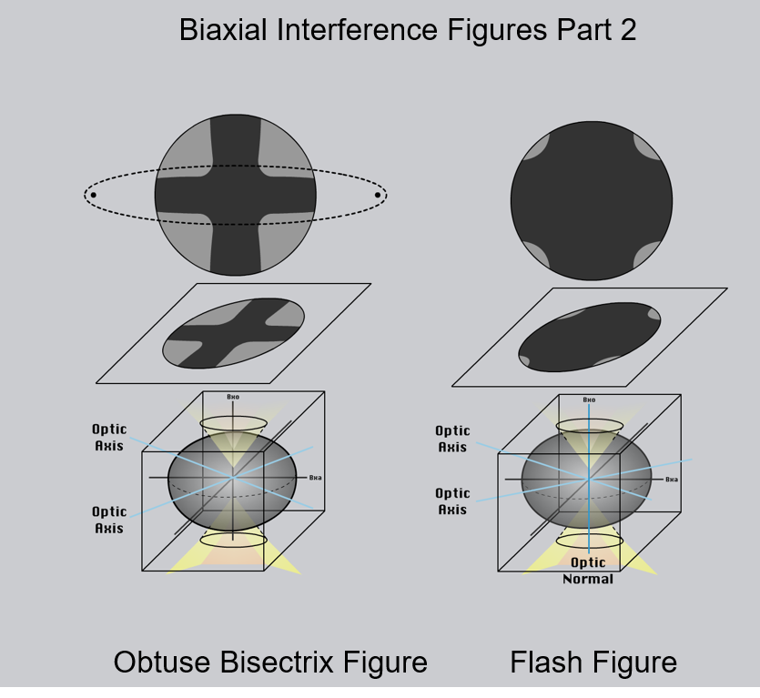 Figure 2.8.12.B. Different types of interference figures produced by biaxial minerals. For simplicity, isochromes are not shown. The lower part of each image shows the orientation of the indicatrix for the mineral. The middle part of the diagram shows the interference figure relative to the thin section and the upper image shows the view through the microscope ocular. Bxa = acute bisectrix; Bxo = obtuse bisectrix.