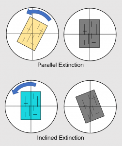 Figure 2.7.3. A comparison of parallel and inclined extinction.
