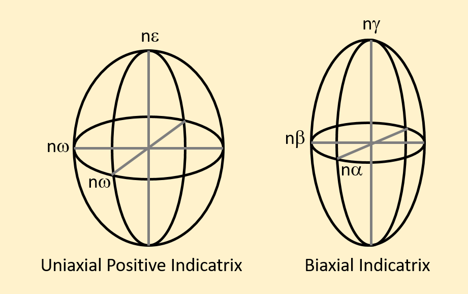 Figure 2.8.4. Examples of a uniaxial indicatrix and a biaxial indicatrix. The indices of refraction are plotted parallel to the vibration direction of light.