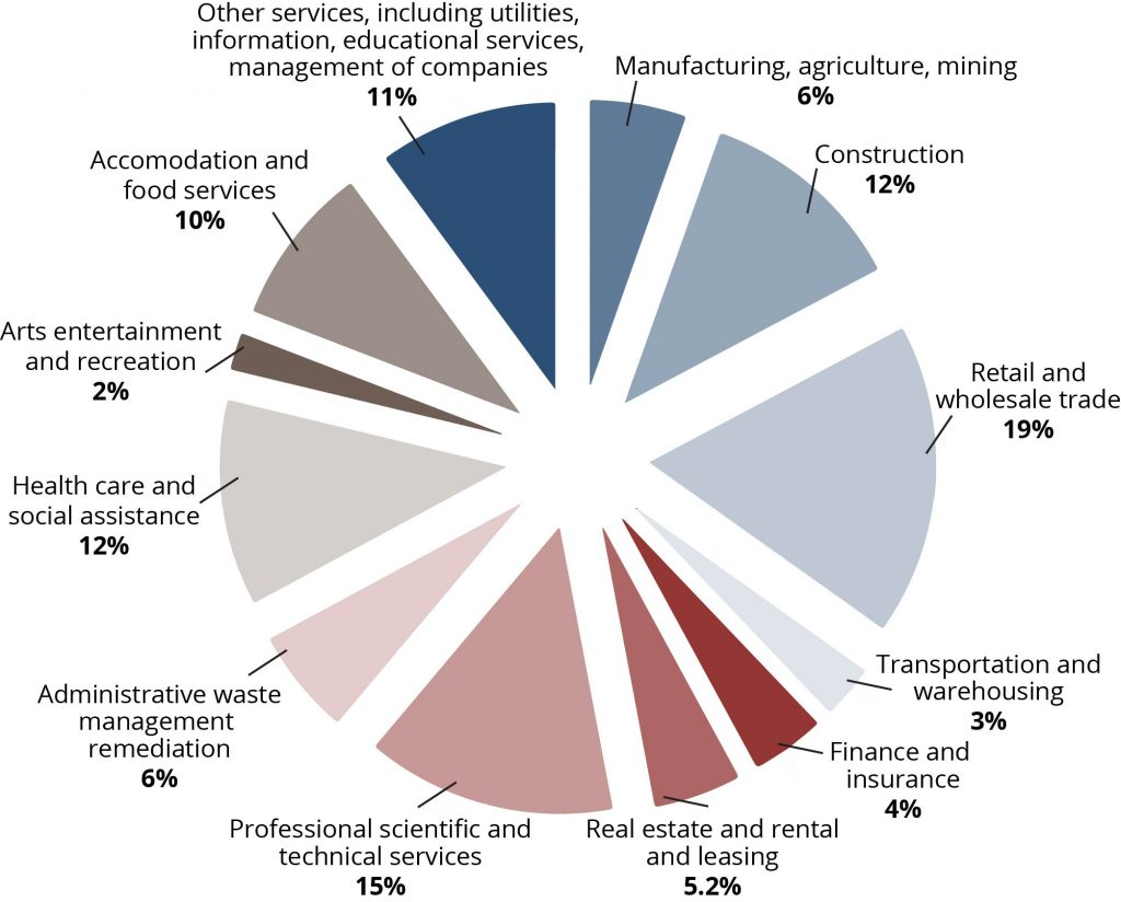 A pie chart of percentages of small businesses separated by industry in 2012. Listed in order from largest percentage to smallest percentage: Retail and wholesale trade, 19%; Professional scientific and technical services, 15%; Construction, 12%; Health care and social assistance, 12%; Other services, including utilities, information, educational services, management of other companies, 11%; Accommodation and food services, 10%; Manufacturing, agriculture, mining, 6%; Administrative waste management remediation, 6%; Real estate and rental and leasing, 5.2%; Finance and insurance, 4%; Transportation and warehousing, 3%; Arts entertainment and recreation, 2%.